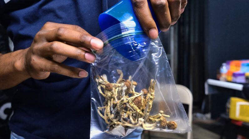 Health Supplements After Legal Win, What's Next for Magic Mushrooms?